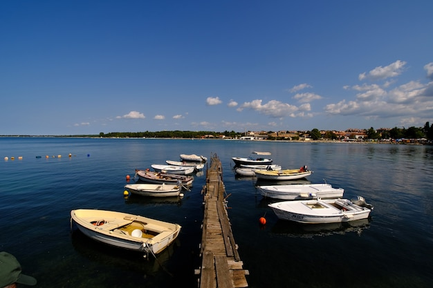 Boten in de haven van rovinj, kroatië