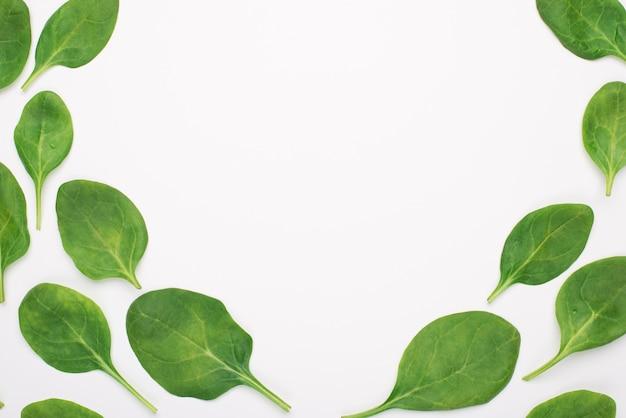Boven boven bovenaanzicht foto van baby spinazie geplaatst aan de zijkanten waardoor het centrum leeg is geïsoleerd op een witte achtergrond
