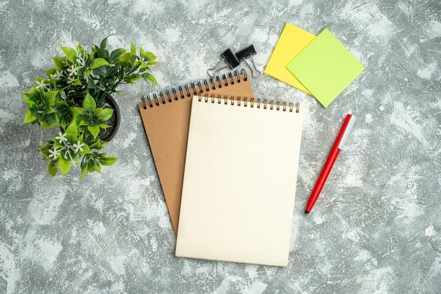 Boven mening van twee kraftpapier-spiraalnotitieboekje met pen kleurrijk briefpapier en bloempot op ijsachtergrond