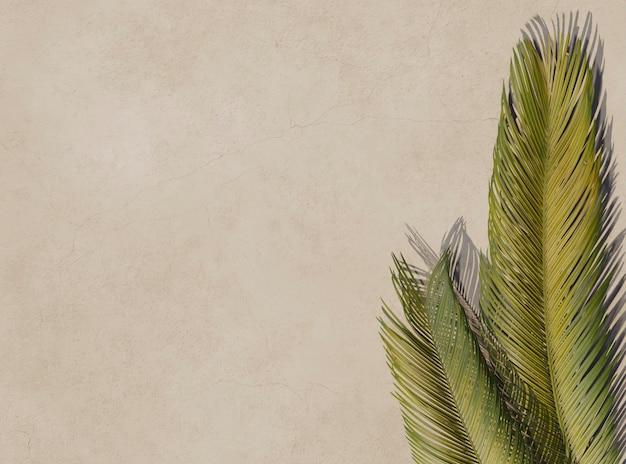 Bovenaanzicht 3d groene palmbladeren samenstelling