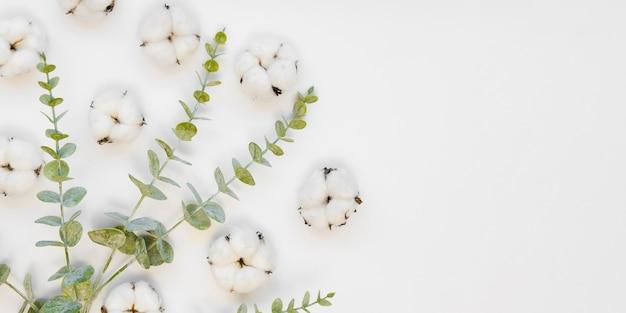 Bovenaanzicht arrangement met katoenen bloemen en bladeren
