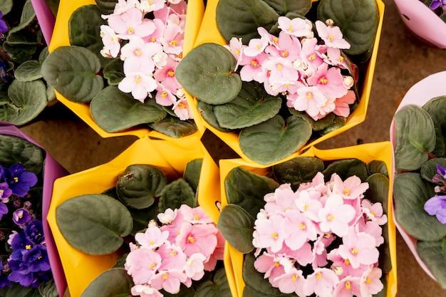Bovenaanzicht arrangement met roze en paarse bloemen