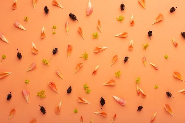 Bovenaanzicht arrangement van bloemblaadjes