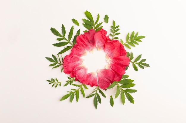 Bovenaanzicht assortiment bloemen