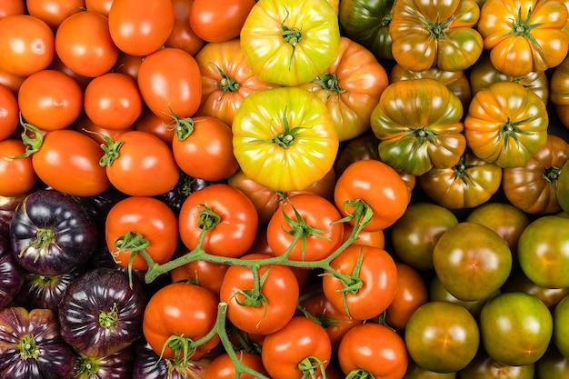 Bovenaanzicht assortiment tomaten van vele soorten, gezonde voeding ,. supermarkt.