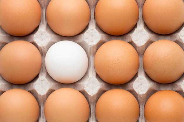 Bovenaanzicht bekisting met eieren