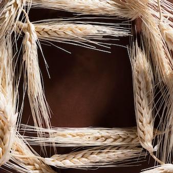 Bovenaanzicht biologische tarwe met kopie ruimte