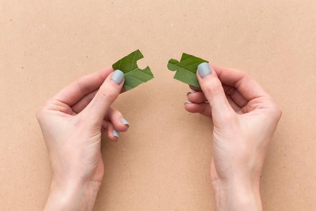 Bovenaanzicht blad puzzelstukje