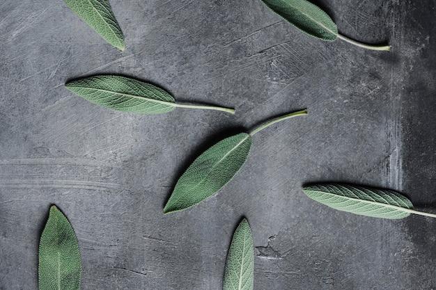 Bovenaanzicht bladeren op aanrecht