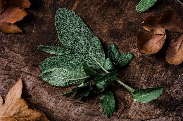Bovenaanzicht bladeren op snijplank