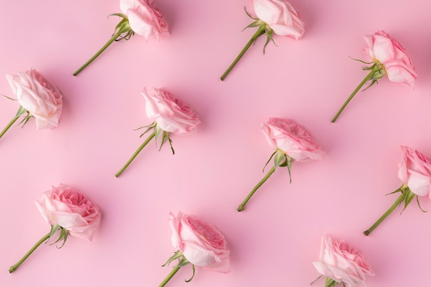 Bovenaanzicht bloeiende rozen