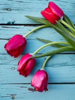 Bovenaanzicht bloeiende tulpen