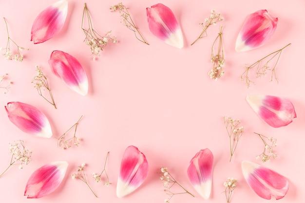 Bovenaanzicht bloemen bloemblaadjes