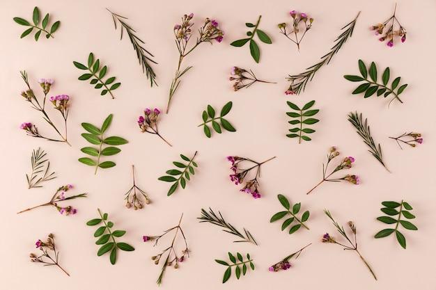 Bovenaanzicht bloemen collectie op tafel