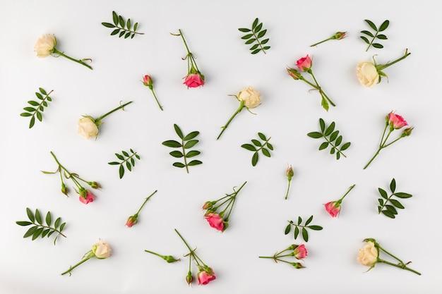 Bovenaanzicht bloemen collectie