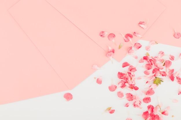 Bovenaanzicht bloemen en bloembladen
