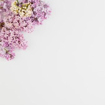 Bovenaanzicht bloemen met kopie ruimte