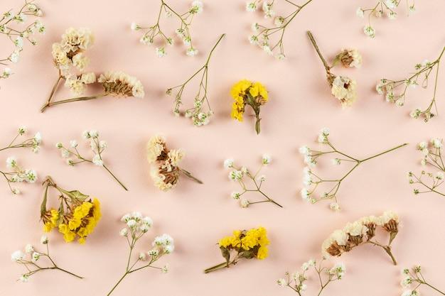 Bovenaanzicht bloemencollectie