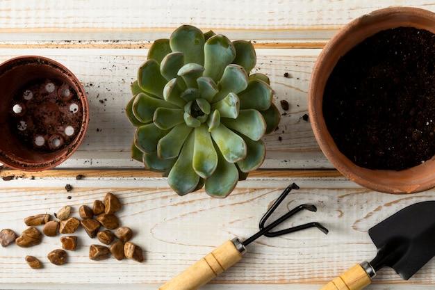 Bovenaanzicht bloempotten en gereedschappen