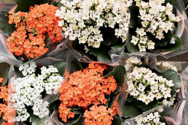Bovenaanzicht boeketten van prachtige bloemen