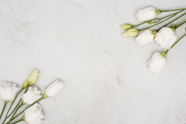 Bovenaanzicht boeketten van witte rozen