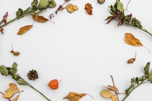 Bovenaanzicht cirkelvormig frame met herfstbladeren