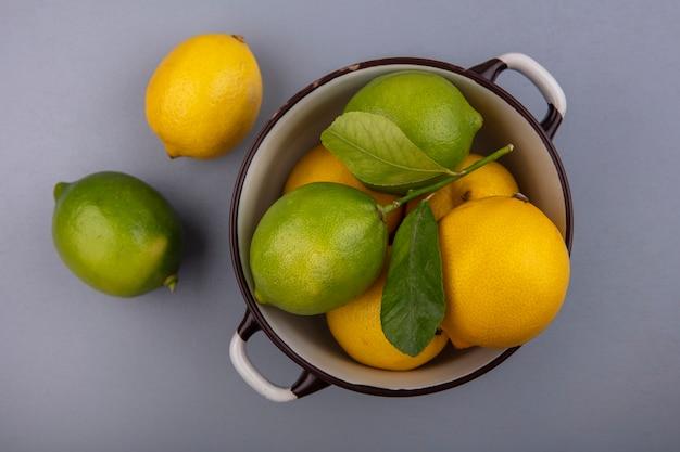 Bovenaanzicht citroenen met limoenen in een pan op een grijze achtergrond