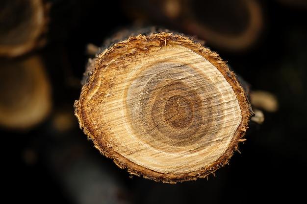 Bovenaanzicht close-up op natuurlijke boomstam gesneden