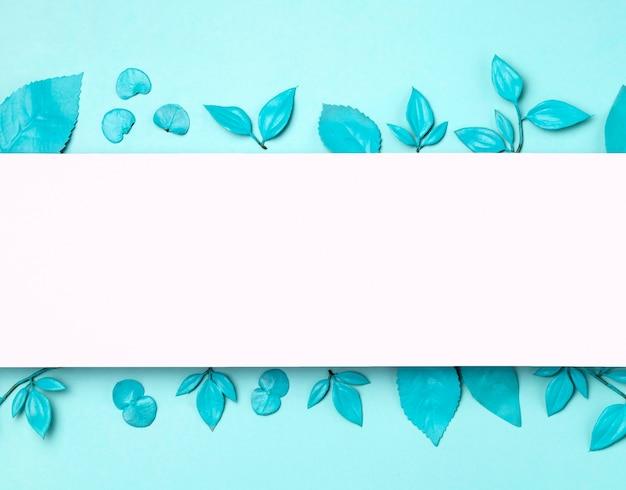 Bovenaanzicht collectie van bladeren met kopie ruimte