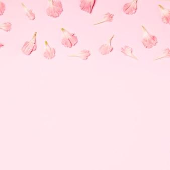 Bovenaanzicht collectie van bloemblaadjes met kopie ruimte
