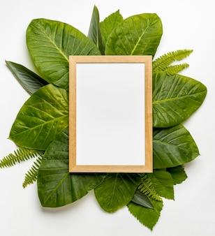 Bovenaanzicht collectie van groene bladeren concept