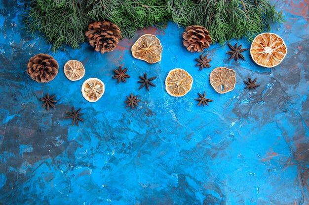 Bovenaanzicht dennenboom takken kegels gedroogde schijfjes citroen anijs zaden op blauw-rode achtergrond vrije plaats