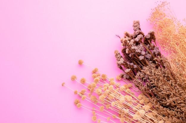 Bovenaanzicht droge kleur gras bloem voor interieurdecoratie.