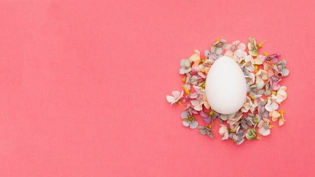 Bovenaanzicht ei bovenop bloemen bloemblaadjes