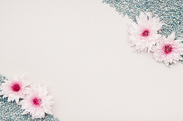 Bovenaanzicht floral frame met kiezelstenen