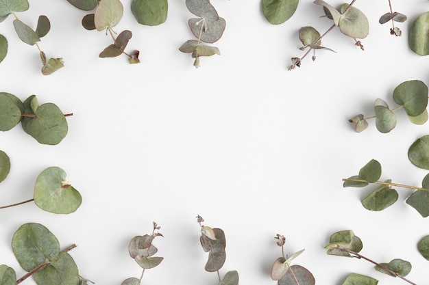 Bovenaanzicht frame van bladeren