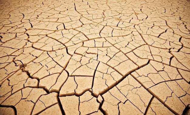 Bovenaanzicht gebarsten droge grond