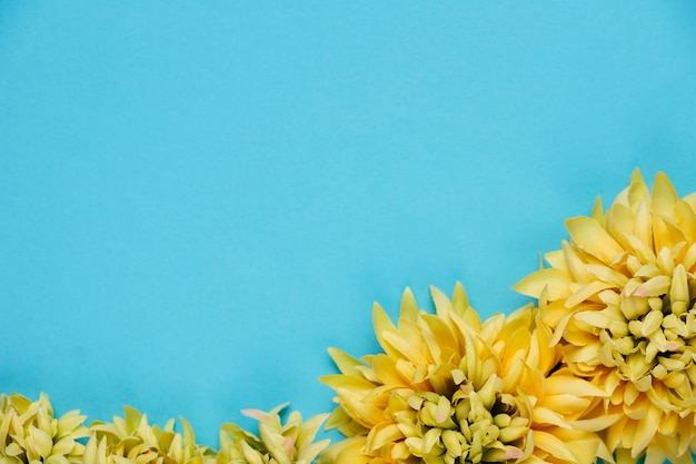 Bovenaanzicht gele chrysant met kopie ruimte