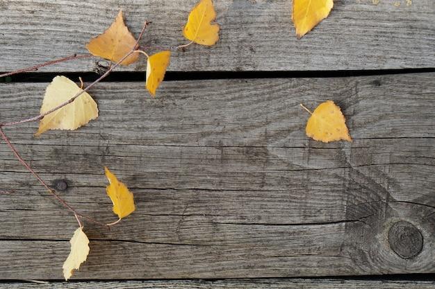 Bovenaanzicht gele herfstbladeren van berk op rustieke oude houten