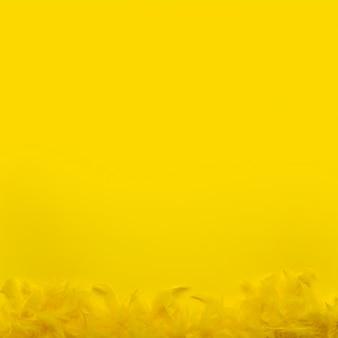 Bovenaanzicht gele veren boa met kopie ruimte