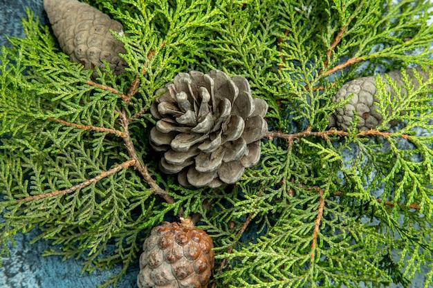 Bovenaanzicht gesloten en open dennenappels pijnboomtakken op grijs oppervlak