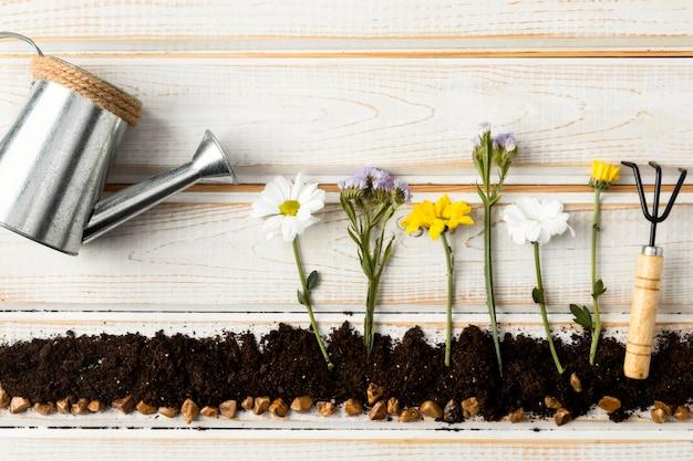 Bovenaanzicht gieter voor bloemen