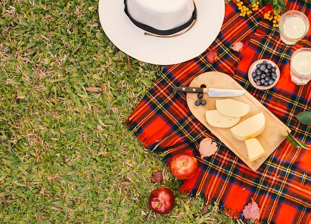 Bovenaanzicht goodies op rode picknickdeken