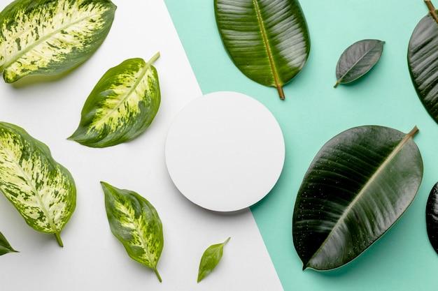 Bovenaanzicht groene bladeren arrangement