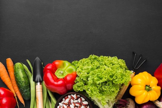 Bovenaanzicht groenten assortiment met kopie ruimte