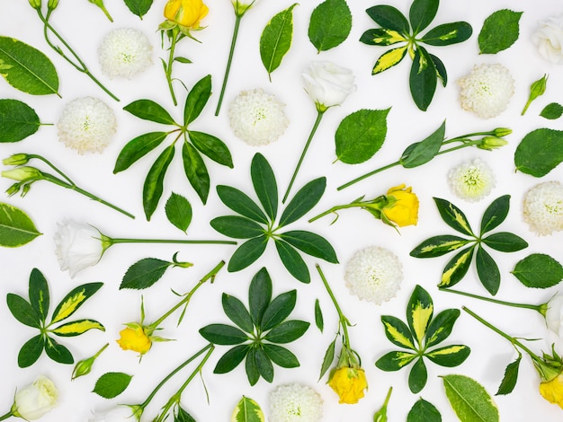 Bovenaanzicht groep bladeren en bloemen