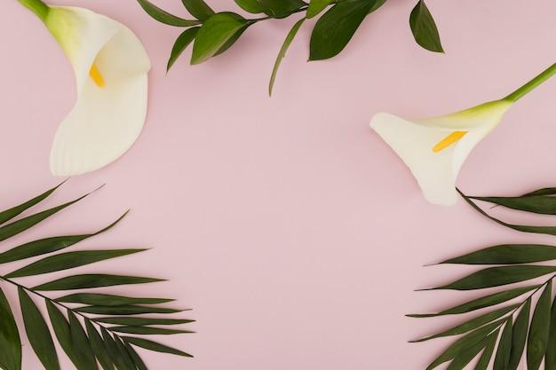 Bovenaanzicht iris en tropische bladeren
