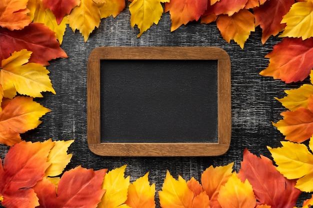 Bovenaanzicht kleurrijke bladeren en frame-assortiment