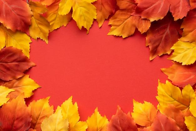 Bovenaanzicht kleurrijke bladeren frame