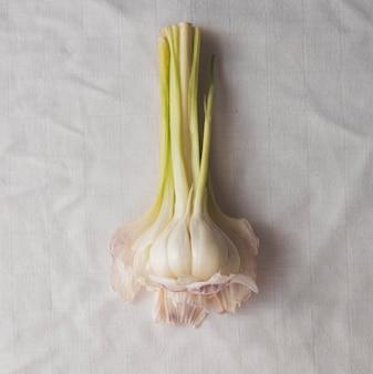 Bovenaanzicht knoflook op witte doek